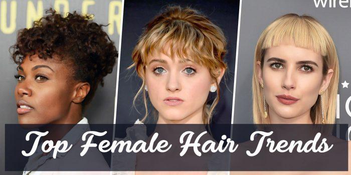 2018 Hair Trends Female Hair Style Guide